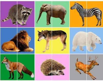 Пазлы-половинки дикие животные